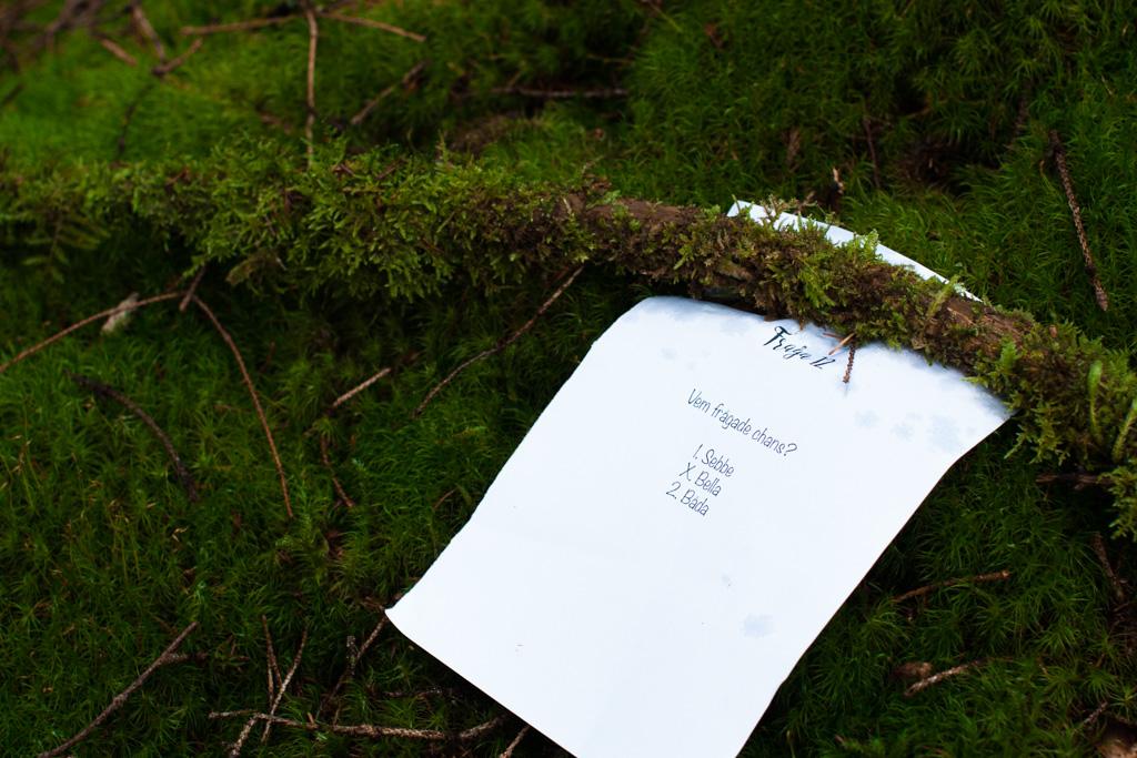 Jag har fotat en Älva och en Rockstjärna i skogen!- Tipspromenad mellan vigsel och mingel!   photobymj.se