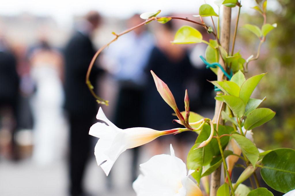Underbara bröllopsporträtt i snålblåsten på Kastellholmen - Mingelbilder vid brudskålen | https://photobymj.se